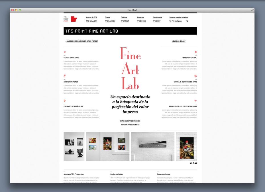 TPS web Fine Art