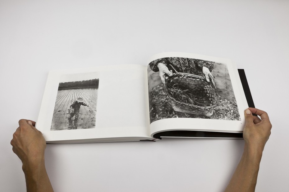 JAPAN book