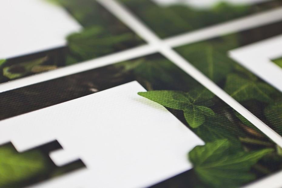 TPS garden flyers